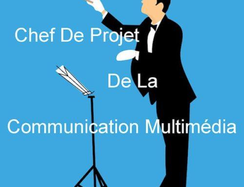 Gestion de projet de la communication multimédia : concept moteur du développement d'affaires